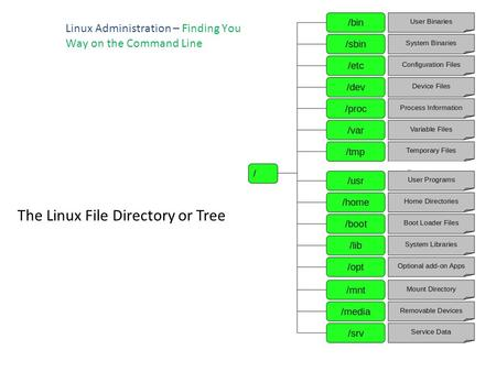 Linux Administration – Finding You Way on the Command Line The Linux File Directory or Tree.