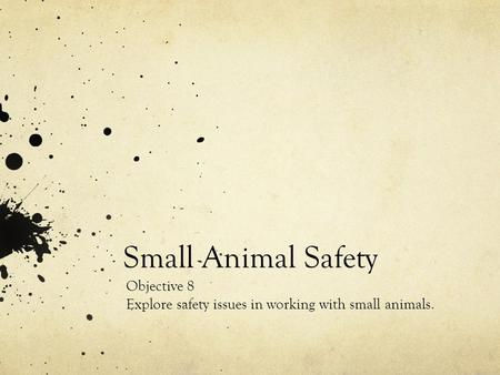 Small Animal Safety Objective 8 Explore safety issues in working with small animals.