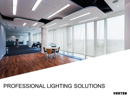 PROFESSIONAL LIGHTING SOLUTIONS. Energy efficient light sources Household lighting Office, industrial and commercial lighting More 500 employees 2008.