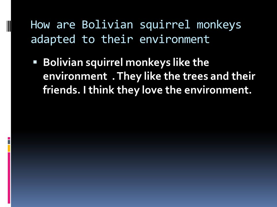 How are Bolivian squirrel monkeys adapted to their environment  Bolivian squirrel monkeys like the environment.