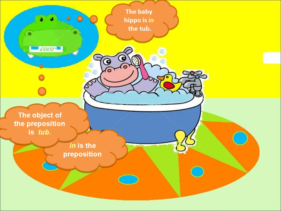 The baby hippo is in the tub.The baby hippo is in the tub.