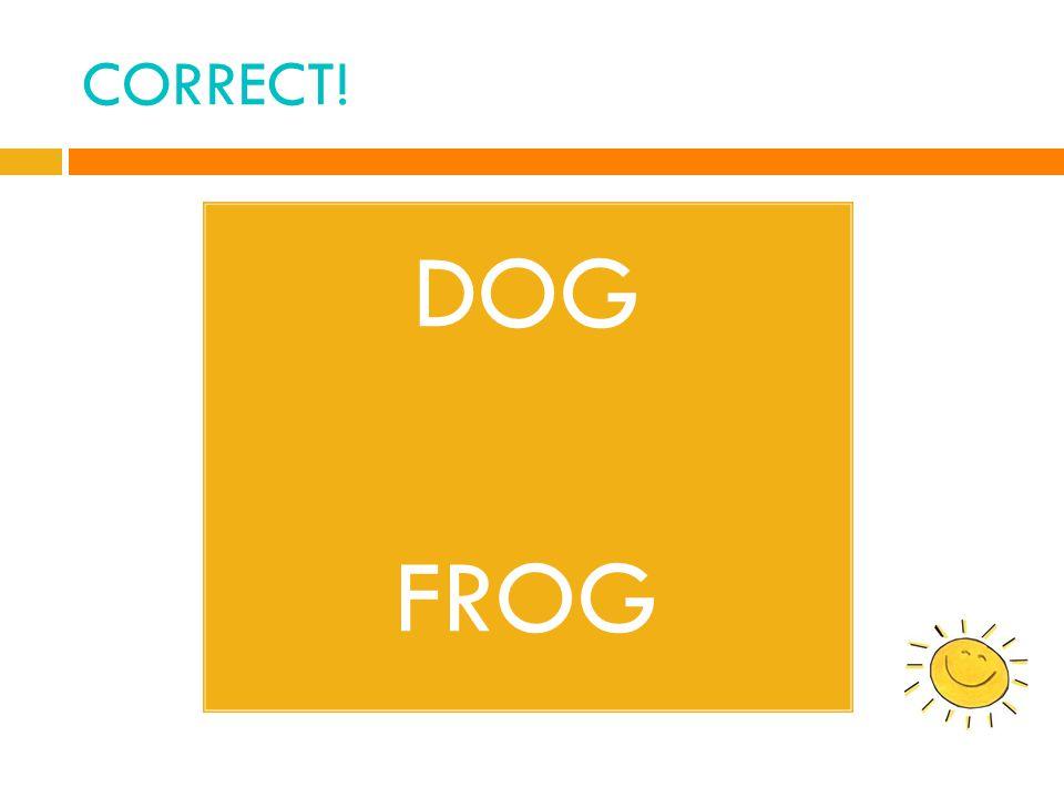 CORRECT! DOG FROG