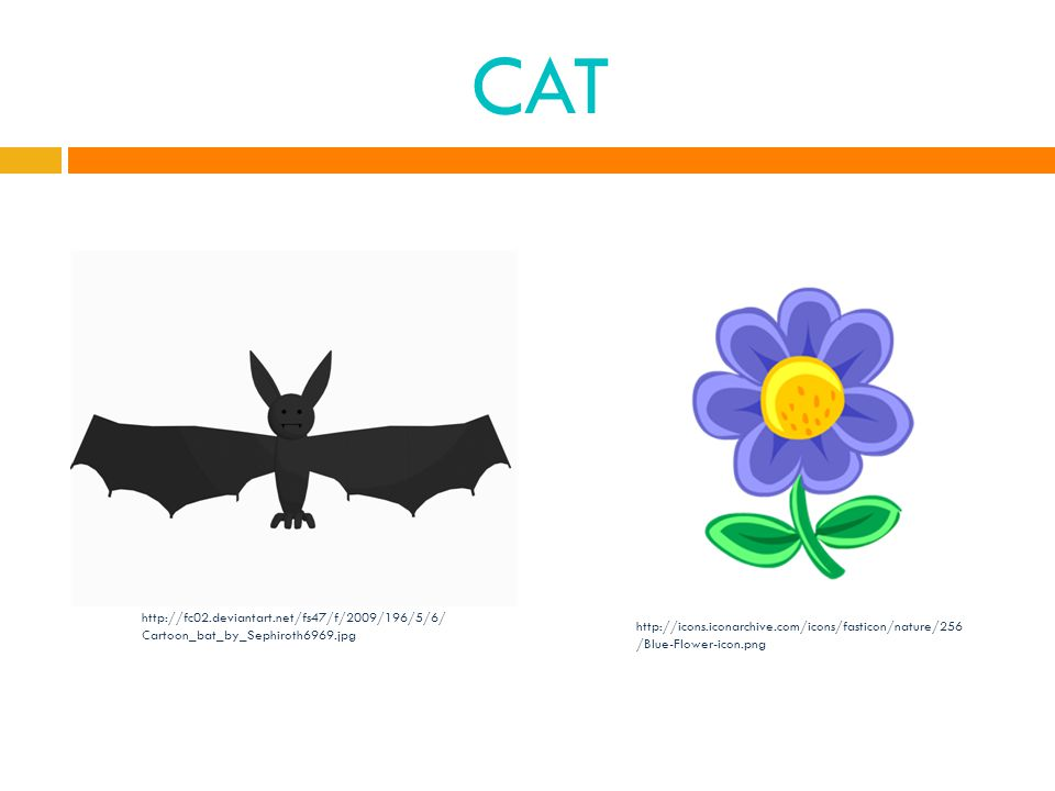 CAT http://fc02.deviantart.net/fs47/f/2009/196/5/6/ Cartoon_bat_by_Sephiroth6969.jpg http://icons.iconarchive.com/icons/fasticon/nature/256 /Blue-Flower-icon.png