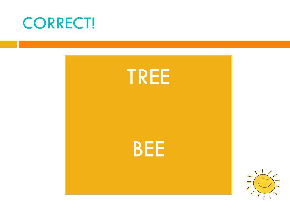 CORRECT! TREE BEE