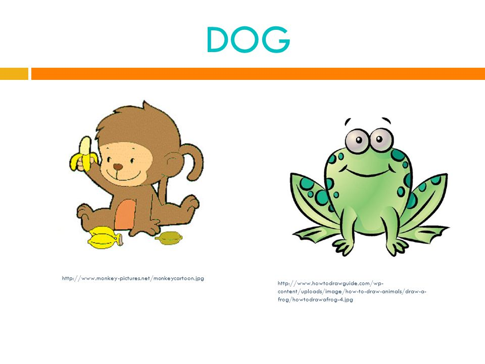 DOG http://www.monkey-pictures.net/monkeycartoon.jpg http://www.howtodrawguide.com/wp- content/uploads/image/how-to-draw-animals/draw-a- frog/howtodrawafrog-4.jpg