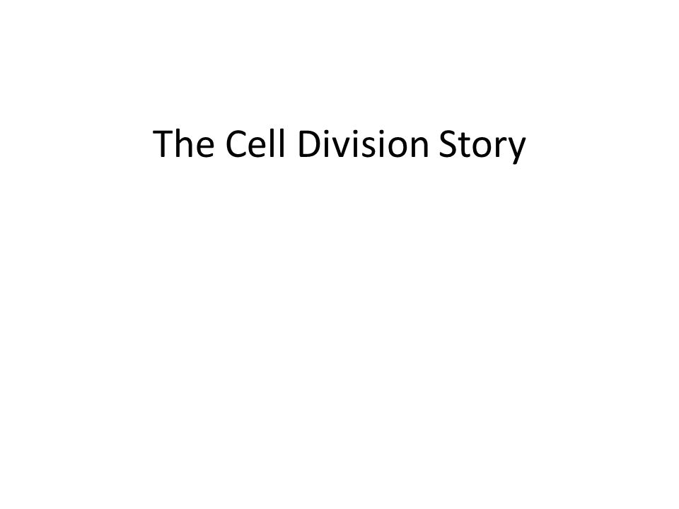Cell Division on overdrive Sometimes cell division gets out of hand.