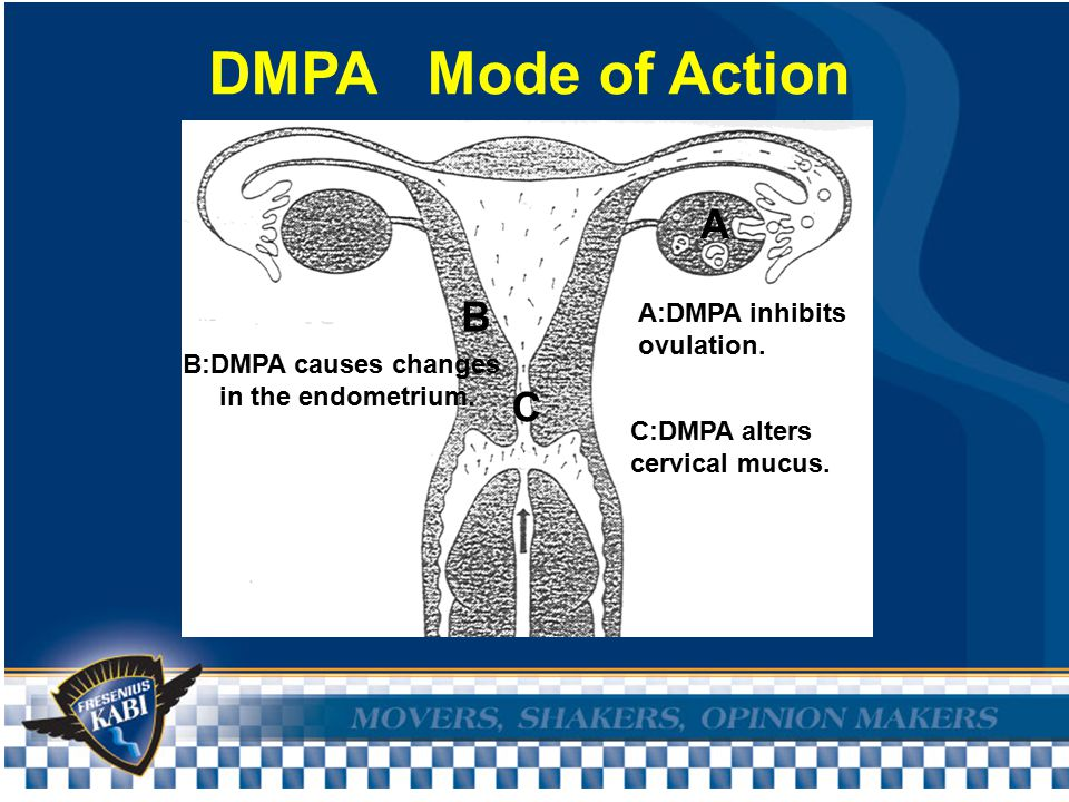 Effect of Depot Contraceptives on the Menstrual Cycle