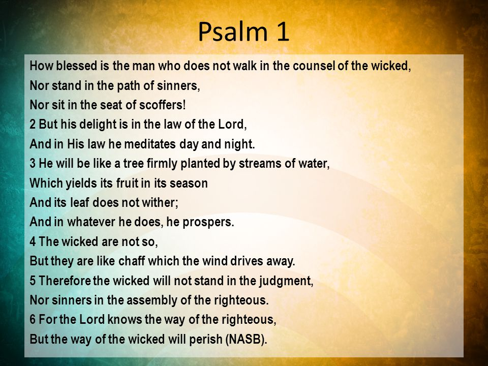 The Blessed Man Does Not… walk in the counsel of the wicked stand in the path of sinners sit in the seat of scoffers (Psalm 1:1).