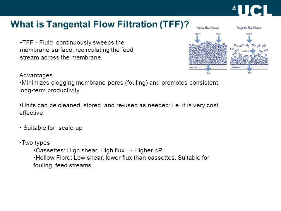 Hollow Fibre vs Cassettes: Initial Flux vs TMP At large scale systems are run in constant flux mode in linear (non fouling) region of the flux vs TMP curve.