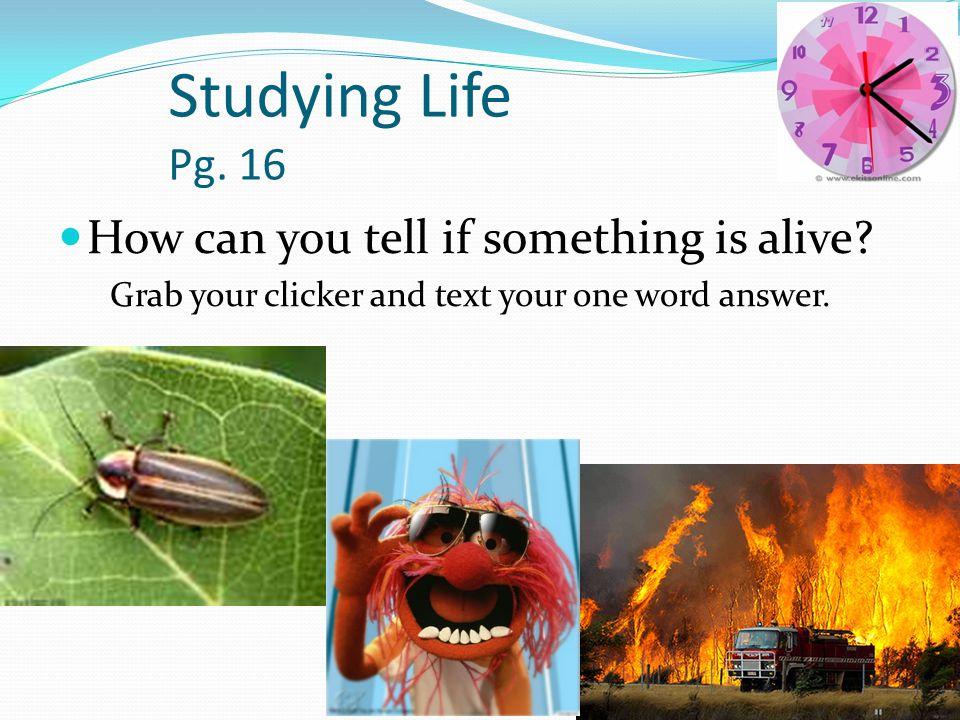 Characteristics of Living Things No single characteristic is enough to describe a living thing.