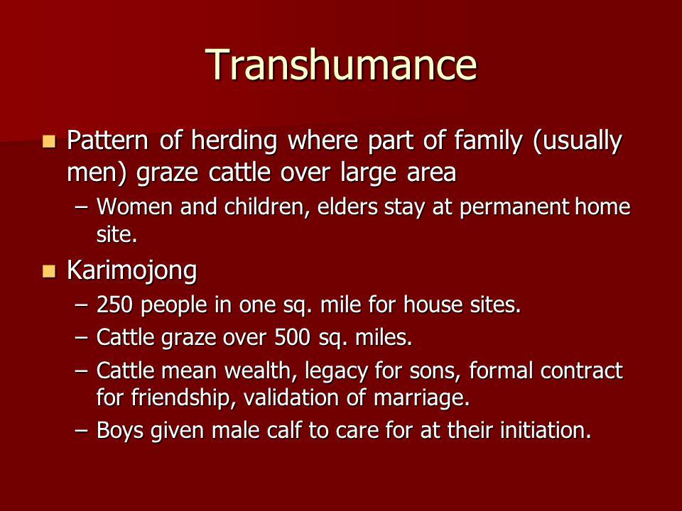 Permanent Villages