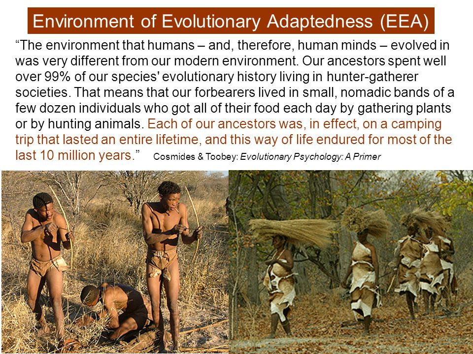 Our species lived as hunter-gatherers 1000 times longer than as anything else.