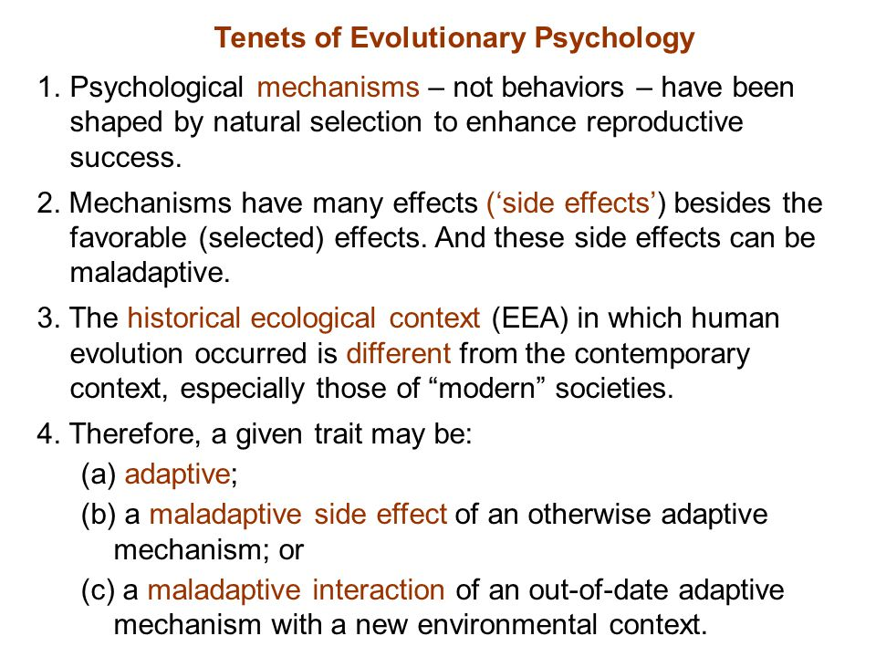 EP HBE Daly & Wilson 1999 vs.Smith, Borgerhoff Mulder & Hill 2000 Evolutionary Psychology vs.