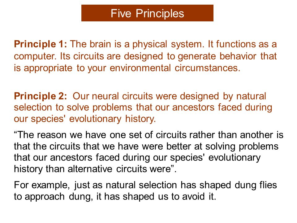 Principle 2: Our neural circuits were designed by natural selection to solve problems that our ancestors faced during our species evolutionary history.