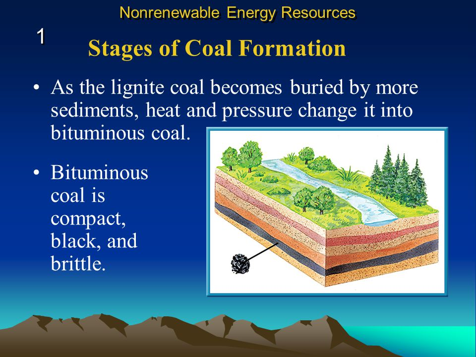 Bituminous coal is compact, black, and brittle.