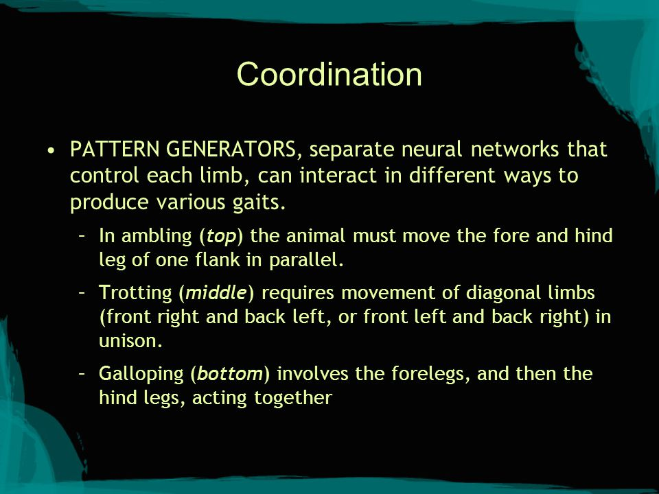 Sensory-Motor Schemas A sensory (perceptual) schema determines whether a given situation is present in the environment.
