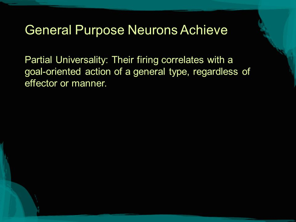 Area F5c Convexity region of F5: Mirror neurons