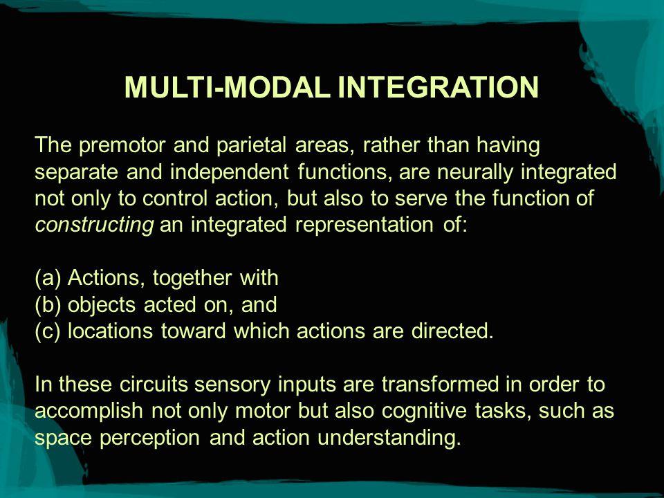 Itti: CS564 - Brain Theory and Artificial Intelligence.