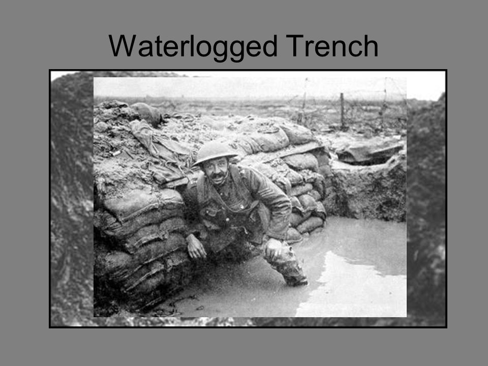 Trench Foot A infection caused by cold wet, unsanitary conditions.