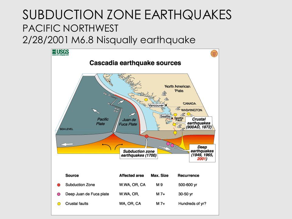 SUBDUCTION ZONE EARTHQUAKE PACIFIC NORTHWEST 2001 Nisqually earthquake Seismicity in the Pacific Northwest M6.8 Normal fault Earthquake hypocenter 52.40 km depth under Tacoma Because it was so deep caused remarkably little damage at the surface.