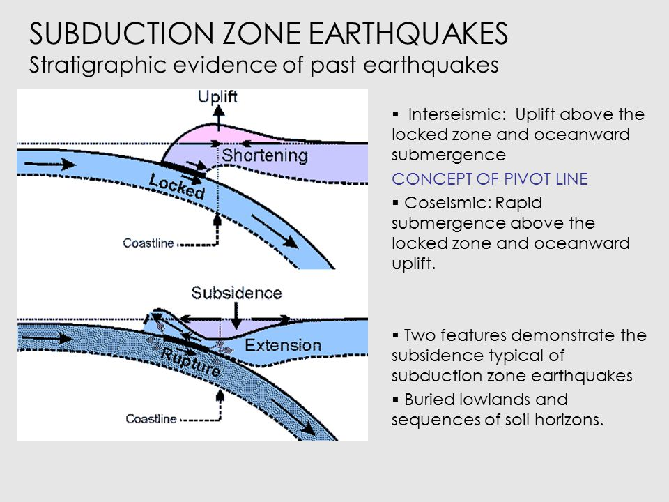 SUBDUCTION ZONE EARTHQUAKES Stratigraphic evidence of past earthquakes  Rapid coseismic subsidence  Deposition of tsunami sand layers  Interseismic emergence