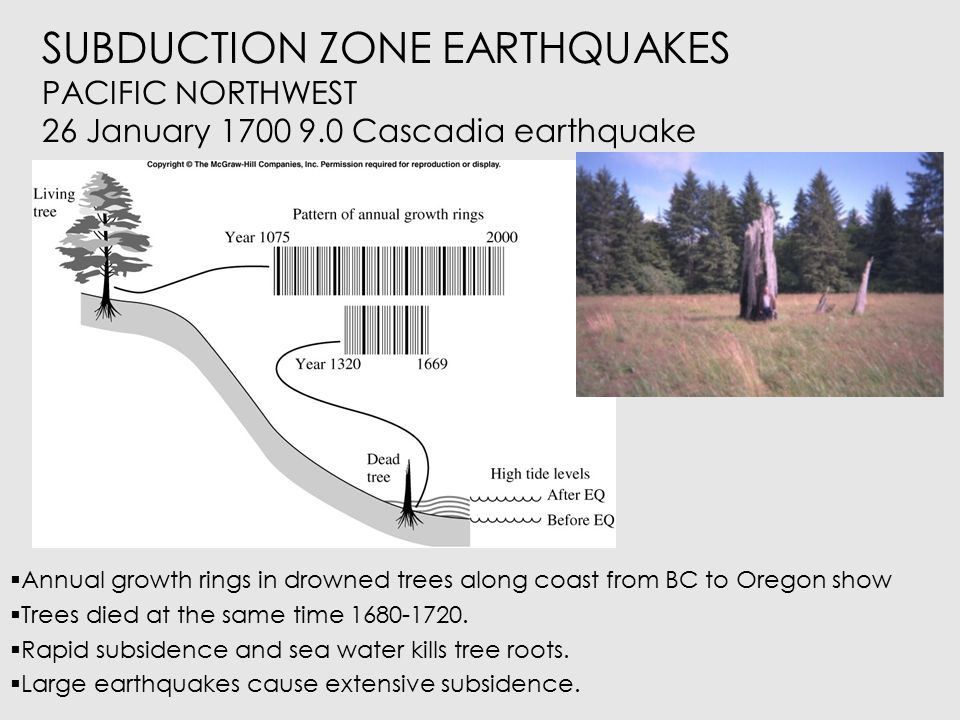 SUBDUCTION ZONE EARTHQUAKES PACIFIC NORTHWEST Japanese records show evidence of a tsunami January 26 1700 that was not from a local earthquake but probably from Pacific Northwest.