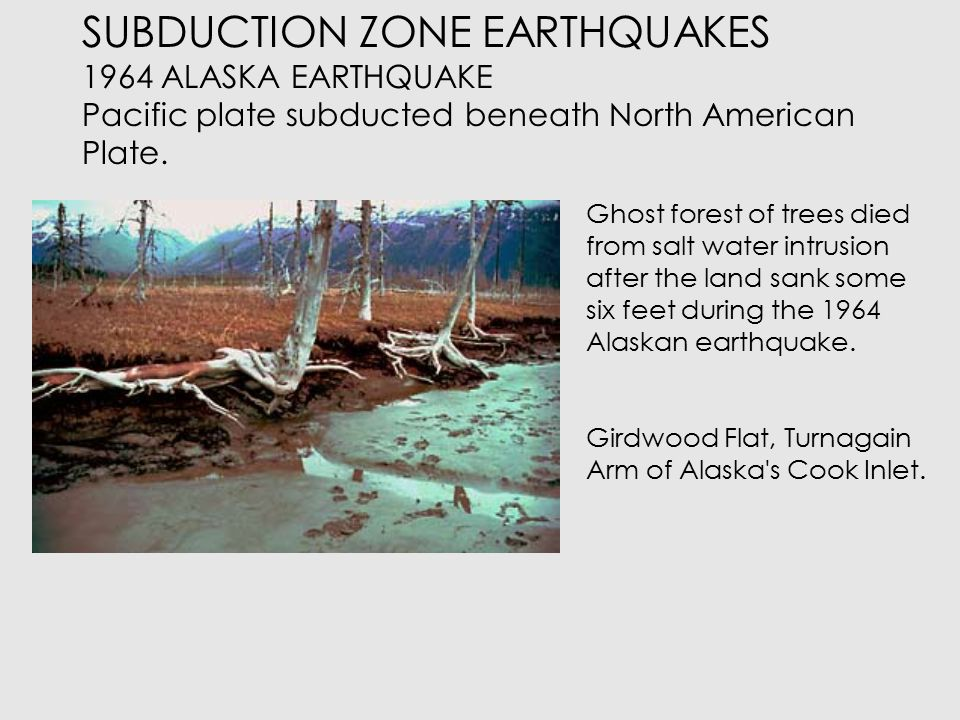 SUBDUCTION ZONE EARTHQUAKE 1985 MEXICO CITY Earthquake in Middle America Trench  Earthquake in middle America trench but damage mostly in Mexico City.