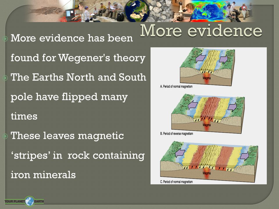  Dense heavy oceanic crust can be subducted below less denser continental crust.