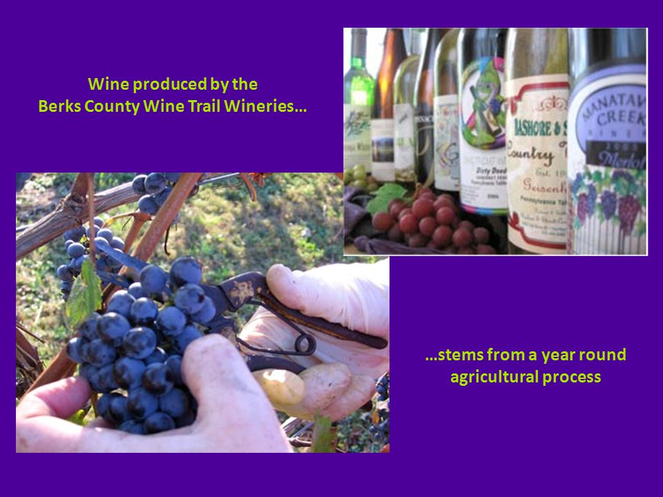 A visual tour of the eight wineries along the Berks County Wine Trail…