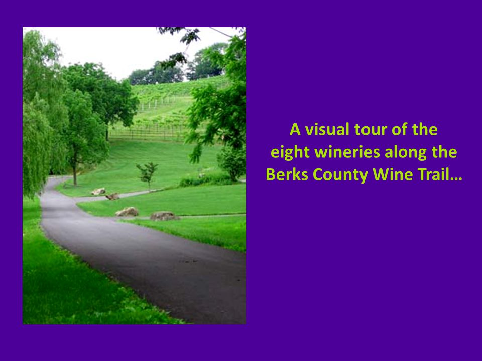 Long Trout Winery