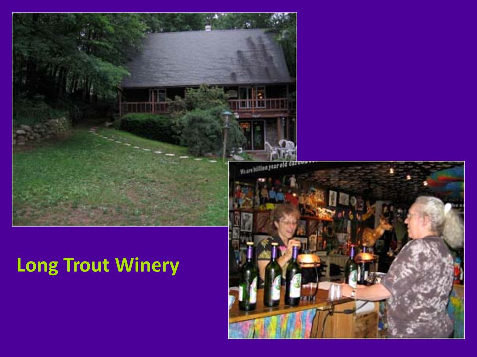 Clover Hill Vineyards & Winery - Robesonia