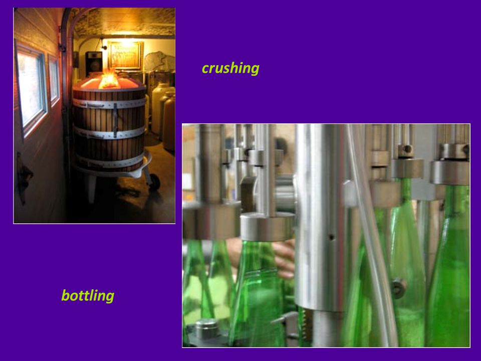 culture of winemaking - PA  philosophy of winemaking – BCWT  soil & climate characteristics  grapes (vinifera) & fruits grown & produced into wines  spectrum wines found along the trail include….