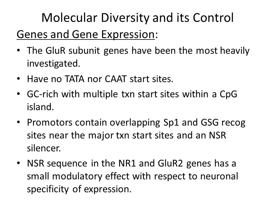 Molecular Diversity and its Control Genes and Gene Expression: The GluR2 NSR sequence is a site of mediation of the stimulatory effects on gene expression of the signaling pathways initiated by the neurotrophic factor, GDNF and BDNF.