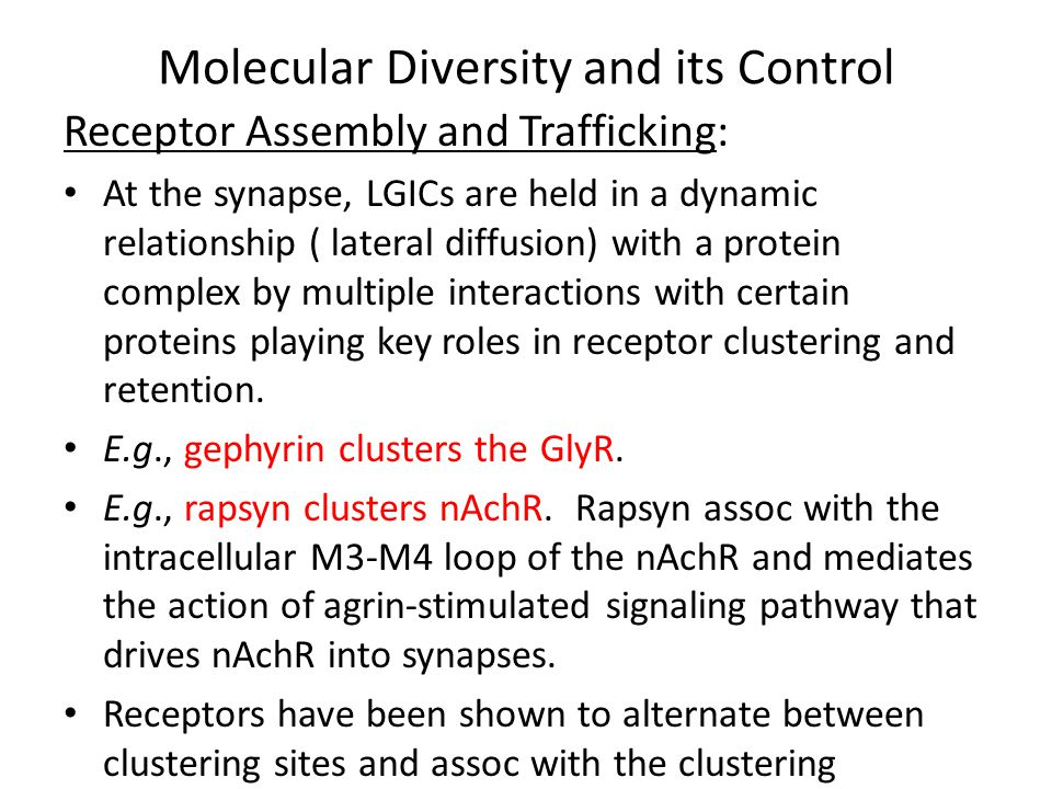 Molecular Diversity and its Control Receptor Assembly and Trafficking: Once at the synapse, the receptors become extensively involved with scaffolding proteins, cytoskeletal anchoring proteins, and signal transduction proteins.