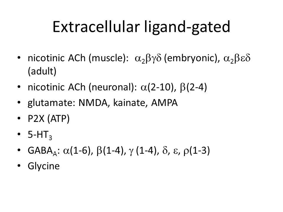 Intracellular ligand-gated leukotriene C 4 -gated Ca 2+ ryanodine receptor Ca 2+ IP 3 -gated Ca 2+ IP 4 -gated Ca 2+ Ca 2+ -gated K + Ca 2+ -gated non- selective cation Ca 2+ -gated Cl – cAMP cation cGMP cation cAMP chloride ATP Cl – volume-regulated Cl – arachidonic acid- activated K + Na + -gated K +
