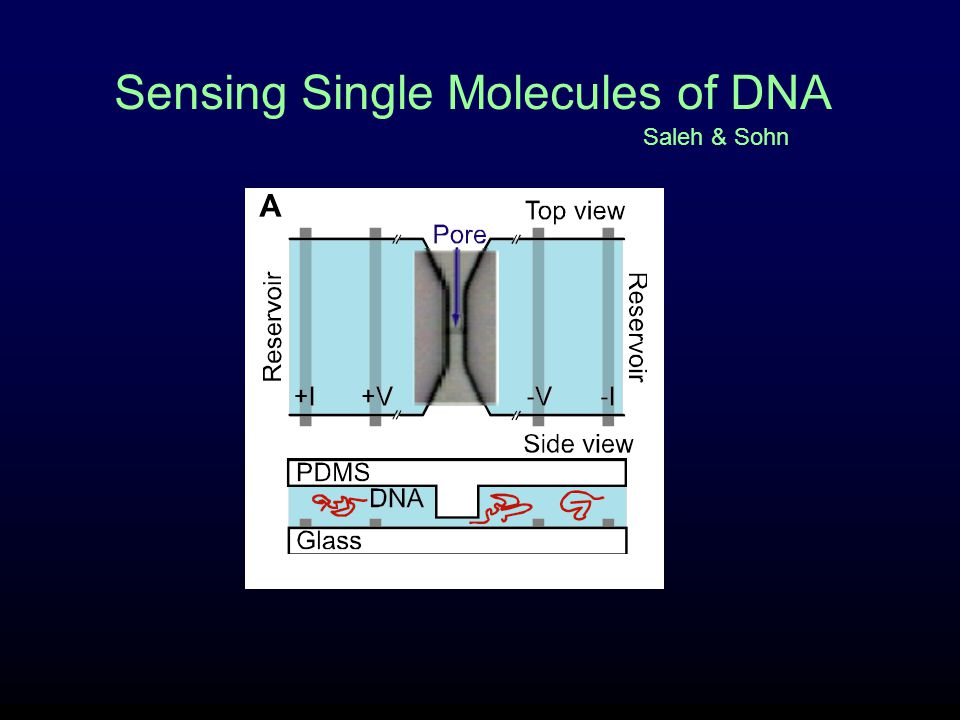 The sensing device EBL on quartz is time consuming Etched samples have finite lifetimes- after ~5 msmts., too dirty to clean and reuse Solution: Embed pore in PDMS- make one master, cast from it forever… Seal PDMS to glass slip that holds electrodes