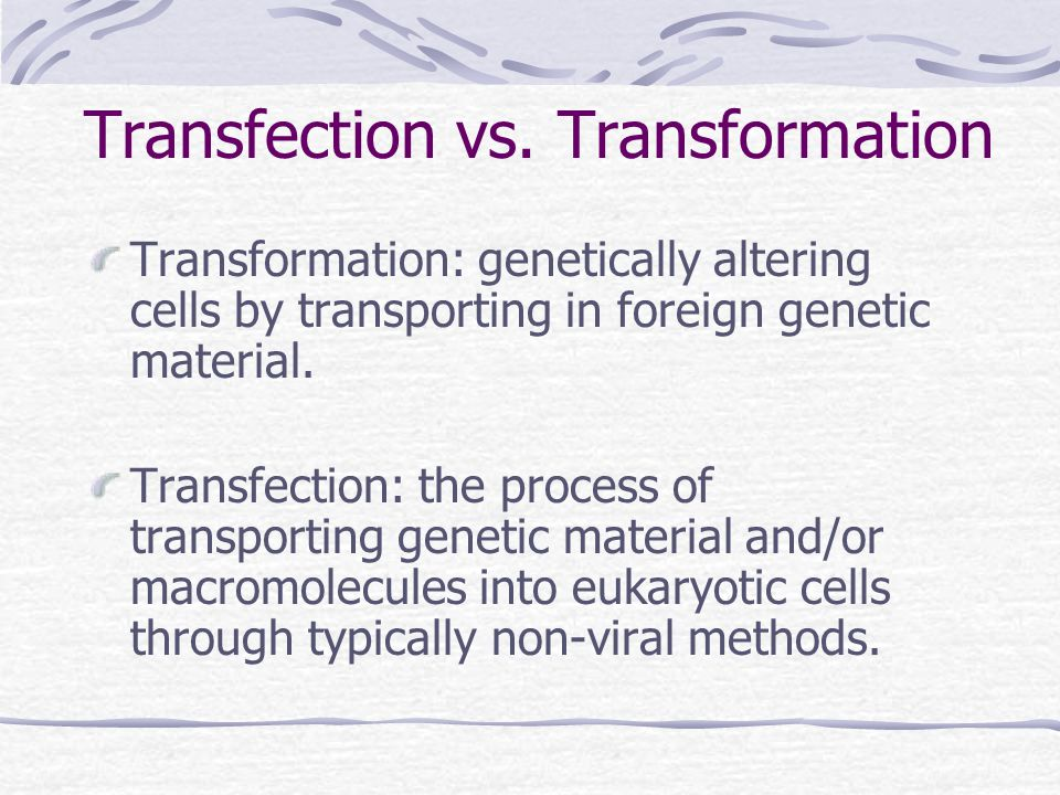 Purpose/uses of Transfection Study gene function Study protein expression Transfer DNA into embryonic stem cells
