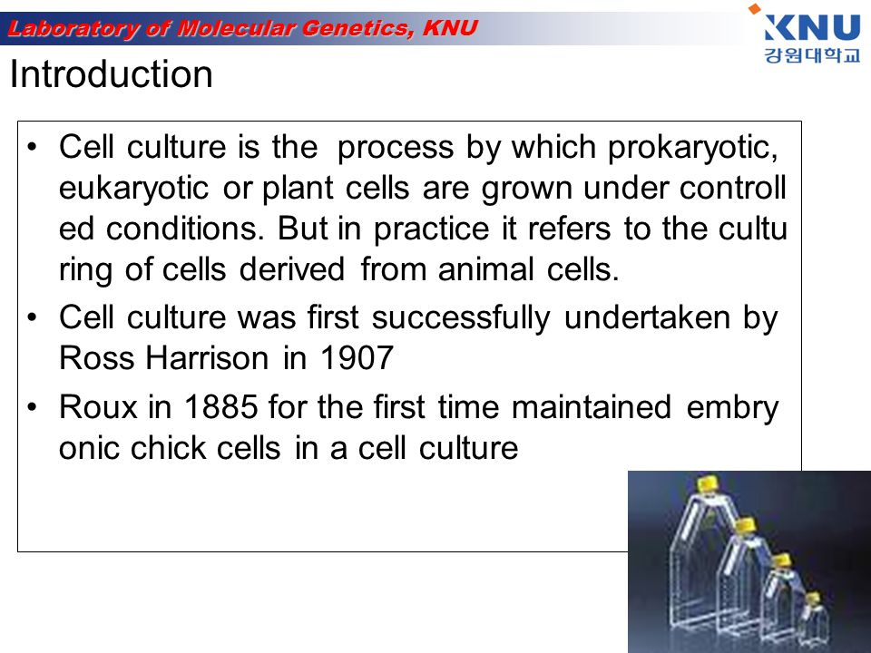 Laboratory of Molecular Genetics, KNU First development was the use of antibiotic s which inhibits the growth of contaminant s.