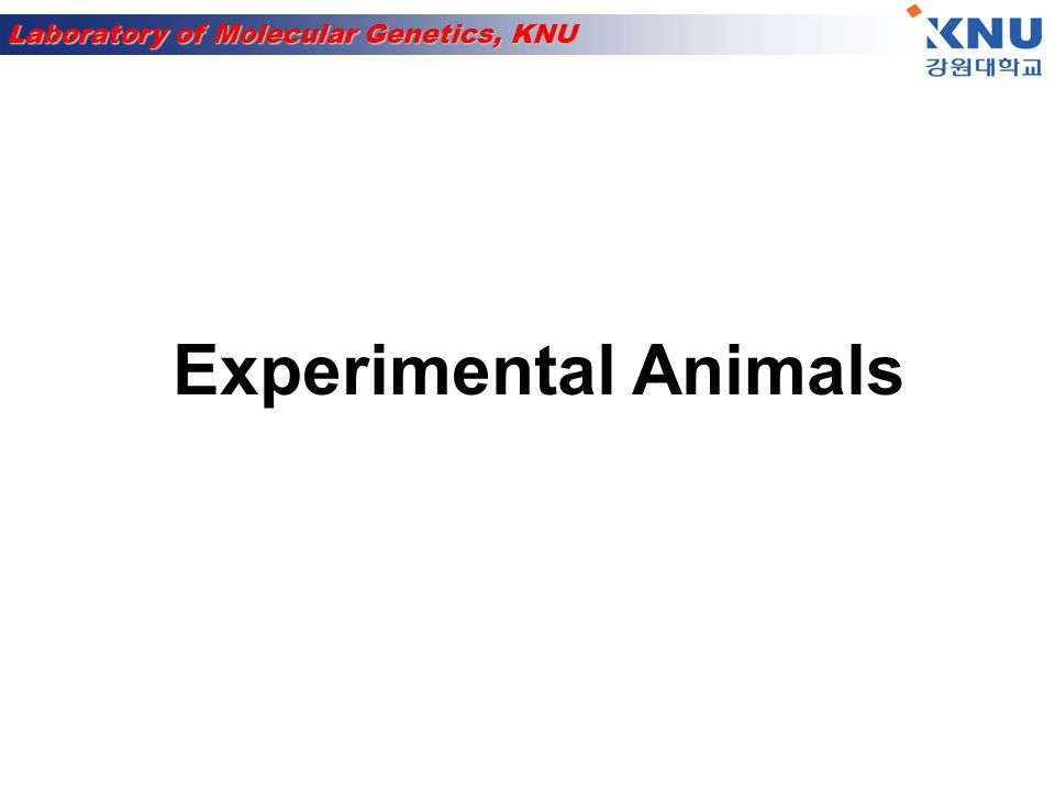 Laboratory of Molecular Genetics, KNU Model systems E.