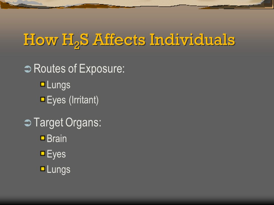 How H 2 S Affects Individuals  Other Factors: Duration (Length of exposure time) Intensity (Level of concentration) Individual Susceptibility (Each individual reacts differently to H 2 S exposure)