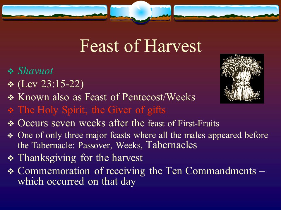Feast of Harvest  Not reaping the corners of the field (Lev 19:9-10):  For the poor; c.f.