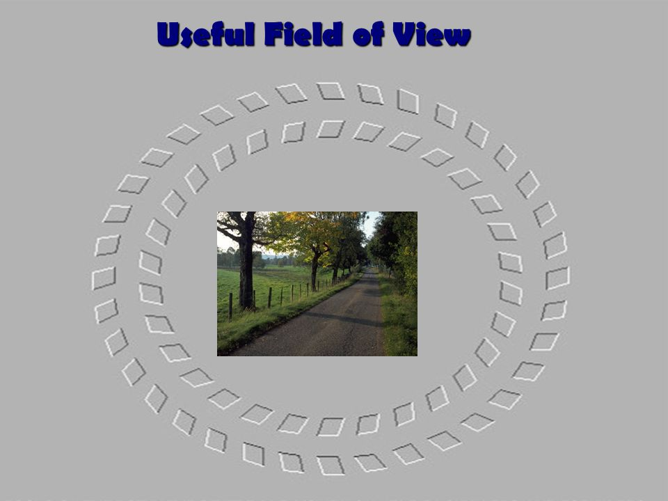 T-1.21 Useful Field of View