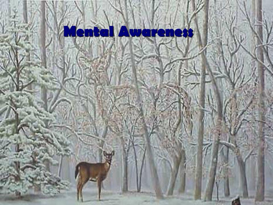 T-1.22 Mental Awareness
