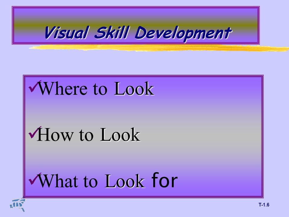 T-1.6 Visual Skill Development Look Where to Look Look How to Look Look What to Look for
