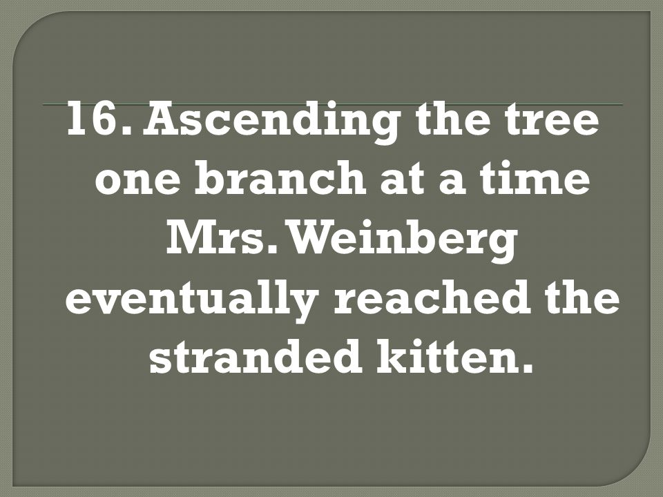 16. Ascending the tree one branch at a time, Mrs. Weinberg eventually reached the stranded kitten.
