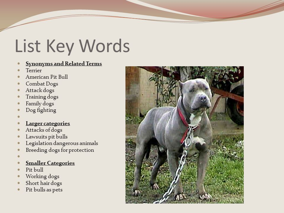 Get an Overview Using the encyclopedia method, I looked at the different categories and found that pit bulls are listed by the United Kennel Association as combat dogs.