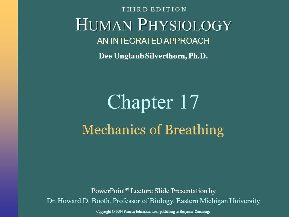 Copyright © 2004 Pearson Education, Inc., publishing as Benjamin Cummings About this Chapter Structure and function of the respiratory pumps How gasses are exchanged with blood The role of pressures and surfactants in rate of exchange How respiration is regulated