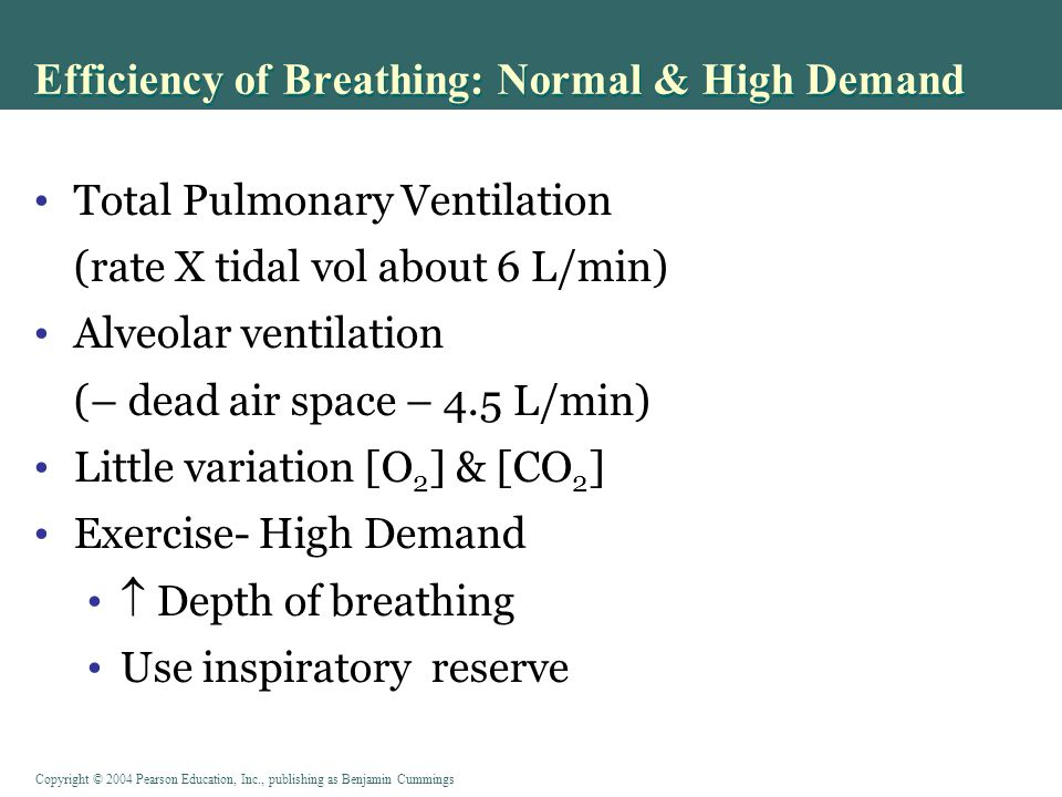 Copyright © 2004 Pearson Education, Inc., publishing as Benjamin Cummings Efficiency of Breathing: Normal & High Demand Figure 17-14: Total pulmonary and alveolar ventilation