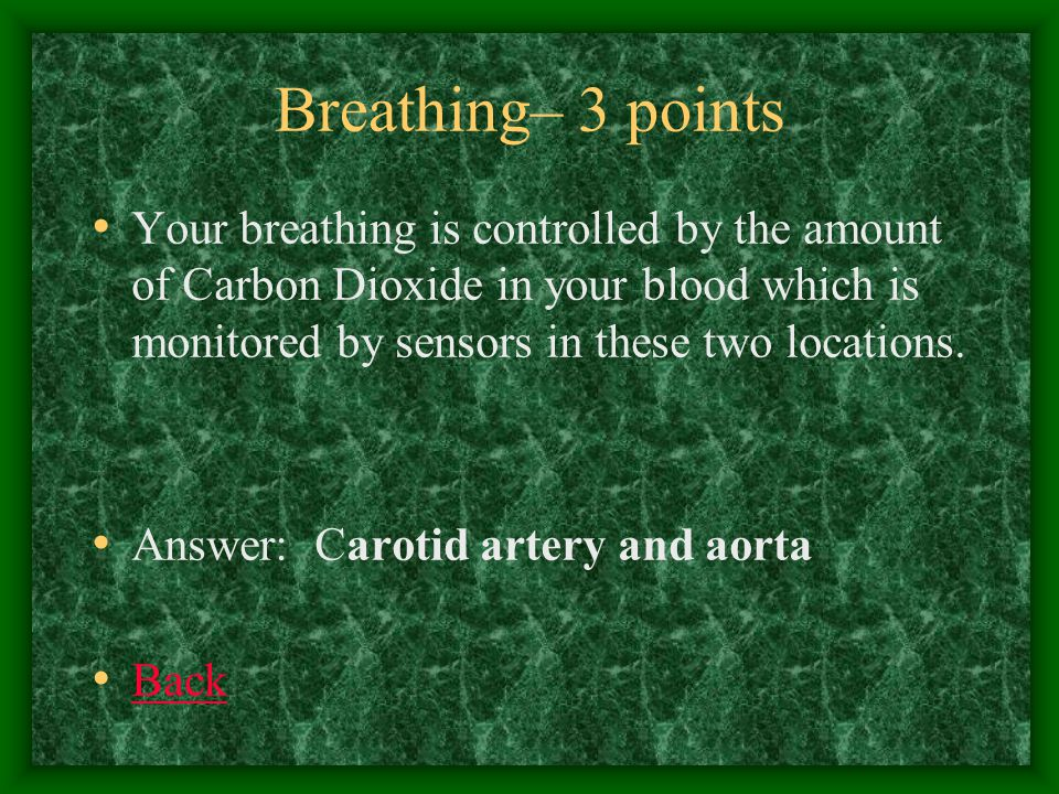 Breathing– 4 points What happens to the diaphragm when you inhale.