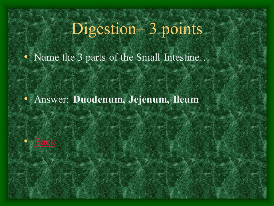 Digestion– 4 points Surgical removal of the human stomach would most directly affect the digestion of… Answer: PROTEINS Back
